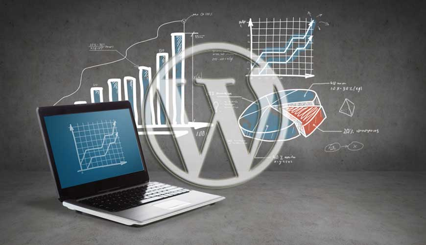 Analyzing Traffic Using WordPress Plugins in Urdu