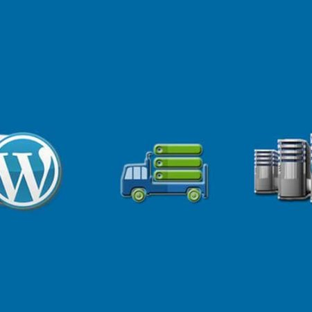 WordPress Site Migration Urdu Tutorial